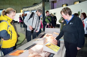 Reitit menestykseen luo uutta virtaa Etelä-Päijänteen alueen matkailulle