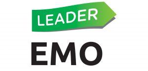 EMO ry:n teemahanke käynnistyi - tukea yhdistysten pieniin investointeihin