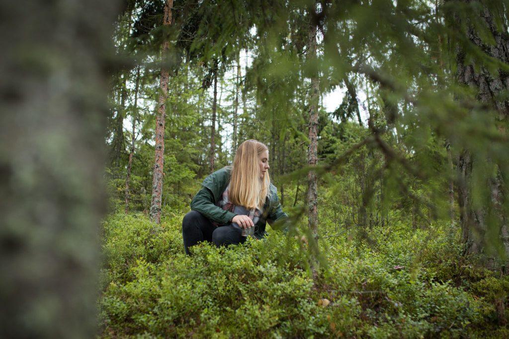 Videot edistävät Päijät-Hämeen luontomatkailua - Hämeenraitti