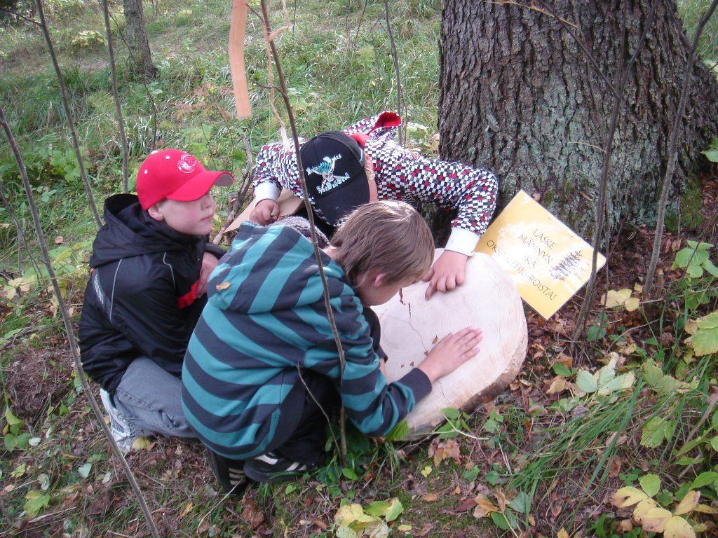 Lähiympäristöstä hyvinvointia Hämeeseen - Hämeenraitti