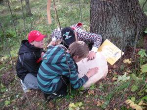 Lähiympäristöstä hyvinvointia Hämeeseen