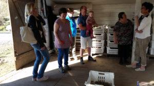 Kyläläiset rakentavat kesäkahvilan perunakuoppaan Räyskälässä