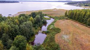 Päijät-Hämeessä kunnostetaan vesistöjä kansainvälisellä yhteistyöllä